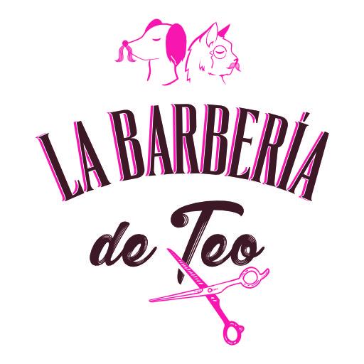 La Barberia De Teo Logo Insta